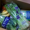 アマゾンamazonで新鮮野菜を買ってみました